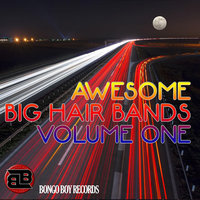 Awesome Big Hair Bands, Vol. One — сборник