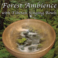 Forest Ambience with Tibetan Singing Bowls: Healing Nature Sounds for Relaxation, Massage Therapy, Sleeping, Reiki — Anahama: Music for Meditation, Relaxation, Sleep
