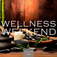 Wellness Weekend, Vol. 1 — сборник