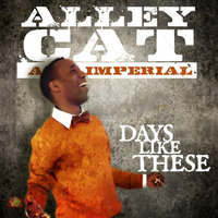 Days Like These — Alley Cat