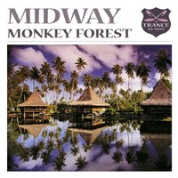 Monkey Forest — Midway