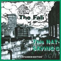 This Nation's Saving Grace — The Fall