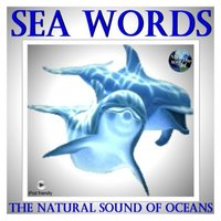 The Natural Sound Of Oceans — Sea Words