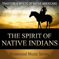 The Spirit of Native Indians — Pete Winter, Mark Bender