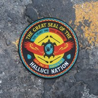 We Are the Halluci Nation — A Tribe Called Red