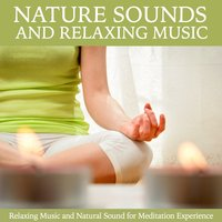 Nature Sound and Music Relaxation — Angel Anne