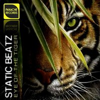 Eye Of The Tiger — Survivor, Static Beatz