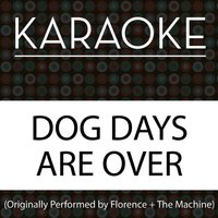Florence The Machine Dog Days Are Over Instrumental