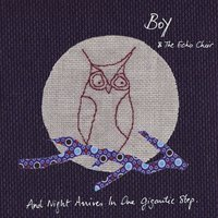 And Night Arrives In One Gigantic Step — Boy and the Echo Choir
