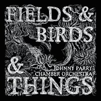 Fields & Birds & Things — Johnny Parry, Johnny Parry Chamber Orchestra