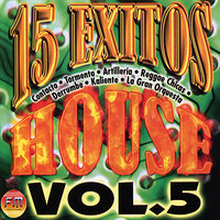 15 Exitos House Vol. 5 — сборник