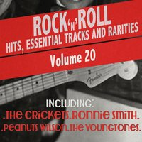 Rock 'N' Roll Hits, Essential Tracks and Rarities, Vol. 20 — сборник