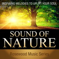 Sound of Nature — Pete Winter