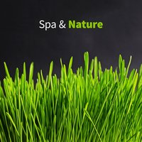 Spa & Nature — Spa, Spa & Spa, Best Relaxing Spa Music, Best Relaxing Spa Music, Spa & Spa, Spa