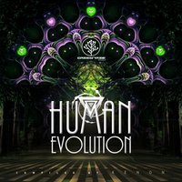 Human Evolution (Compiled by Kenon) — Kenon