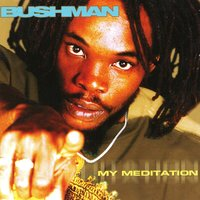 My Meditation — Bushman