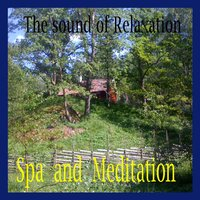 Spa and Meditation — The Sound of Relaxation