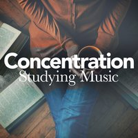 Concentration Studying Music — Studying Music, Studying Music Group, Concentration Music Ensemble, Concentration Music Ensemble|Studying Music|Studying Music Group