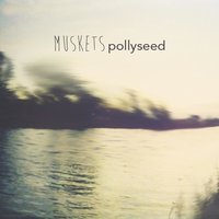 Pollyseed — Muskets