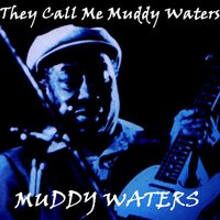 They Call Me Muddy Waters — Muddy Waters