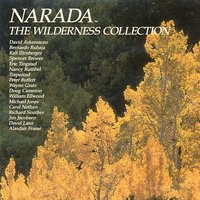 The Narada Wilderness Collection — David Lanz, David Arkenstone, Nancy Rumbel, Eric Tingstad, William Ellwood