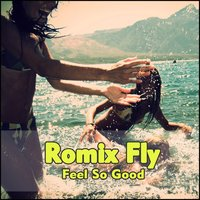 Feel so Good — Romix Fly
