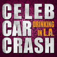 Drinkin' in L.A. — Celeb Car Crash