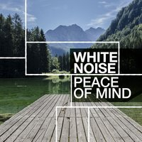 White Noise: Peace of Mind — Raining White Noise Sleep Sound: Increase Focus, Concentration, Privacy - Heal Migranes, Headaches, Tinnitus with raind