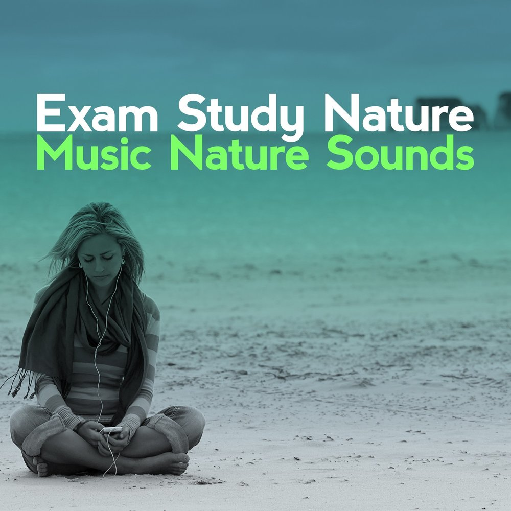 Moorside — Exam Study Nature Music Nature Sounds  Слушать онлайн на
