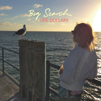 Life Dollars — Big Search