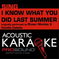 I Know What You Did Last Summer — Karaoke