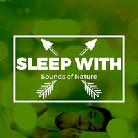 Sleep with Sounds of Nature — Sleep Sounds Of Nature
