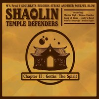 Chapter II : Gettin' the Spirit — Shaolin Temple Defenders
