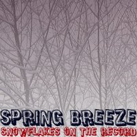 Snowflakes On The Record — Spring Breeze