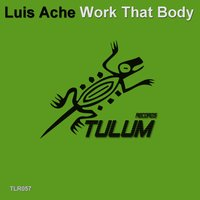 Work That Body — Luis Ache