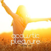 Acoustic Pleasure, Vol. 1 — сборник