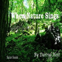 When Nature Sings — Darryl Holt