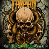 Straight from the Underground — Taipan