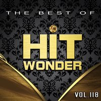 Hit Wonder: The Best of, Vol. 118 — сборник