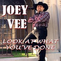 Look at What You've Done — Joey Vee