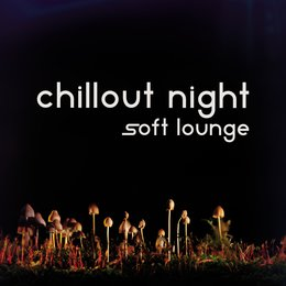 Chillout Night — Chillout Night