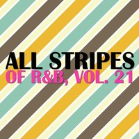 All Stripes of R&B, Vol. 21 — сборник