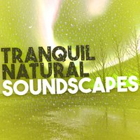 Tranquil Natural Soundscapes — сборник