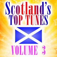 Scotland's Top Tunes, Vol. 3 — David Solley