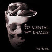 Of Mental Images — WJ Plecha