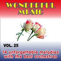 Wonderful Music Vol. 25, 14 Unforgettable Melodies With The Best Orchestras — сборник