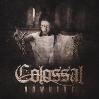 Nowhere — Colossal