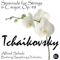 Tchaikovsky: Serenade for Strings in C major, Op. 48 — Bamberg Symphony Orchestra & Alfred Scholz