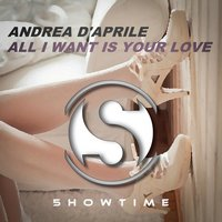 All I Want Is Your Love — Andrea d'aprile