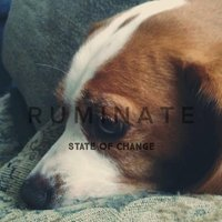 State of Change — Ruminate